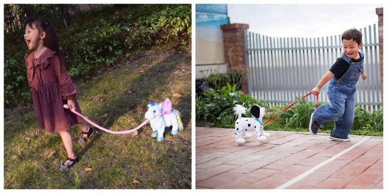 Unicorn On A Leash Toy